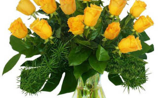 Желтые высокие цветы