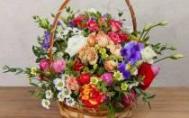Как поливать цветы в коробке