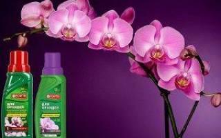 Форте для орхидей инструкция